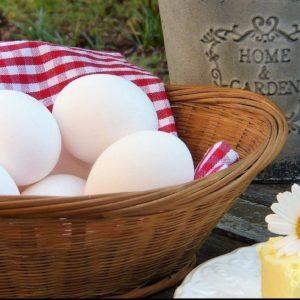 Bơ và Trứng